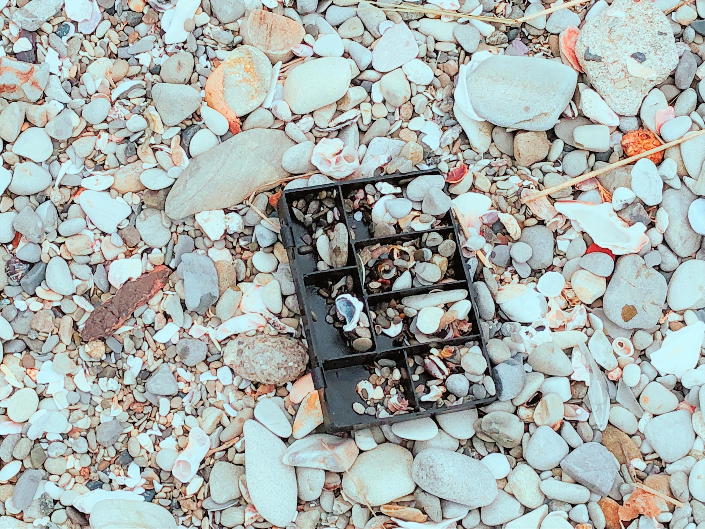 真名瀬海岸の砂浜にはいろんなものが転がっていたよ