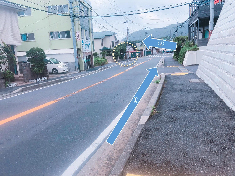 葉山公園前バス停から振り返った写真。後ろの方に向こう側にわたる横断歩道が見える。
