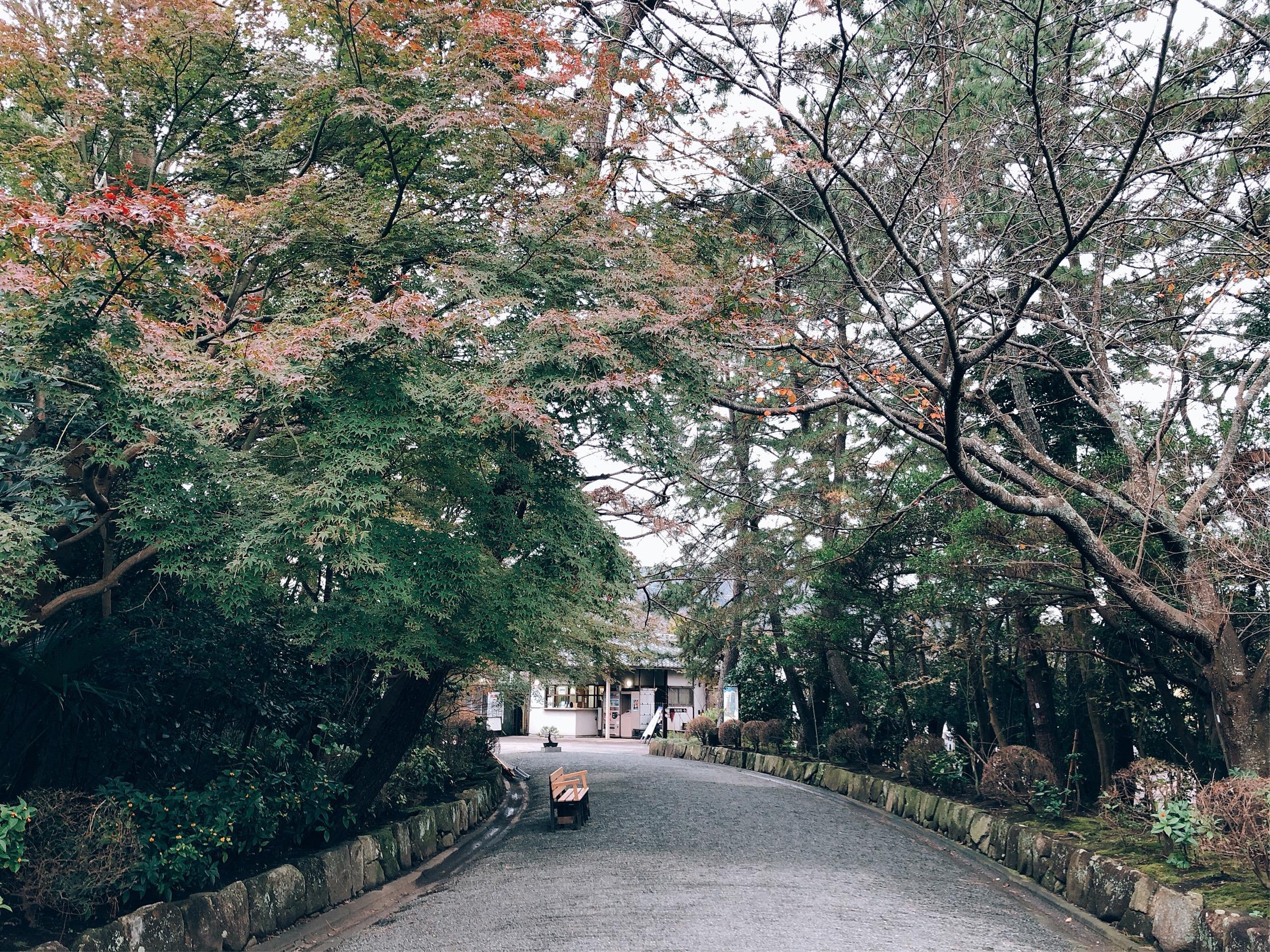 しおさい公園に入り、の入り口を振り返ったところ。まだ紅葉は始まったばかり。