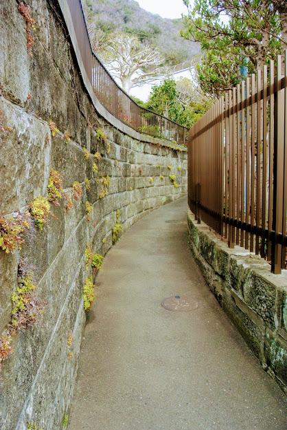 山口蓬春記念館へ向かう小道