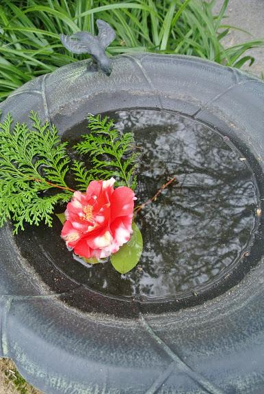山口蓬春記念館、四季折々の庭の花