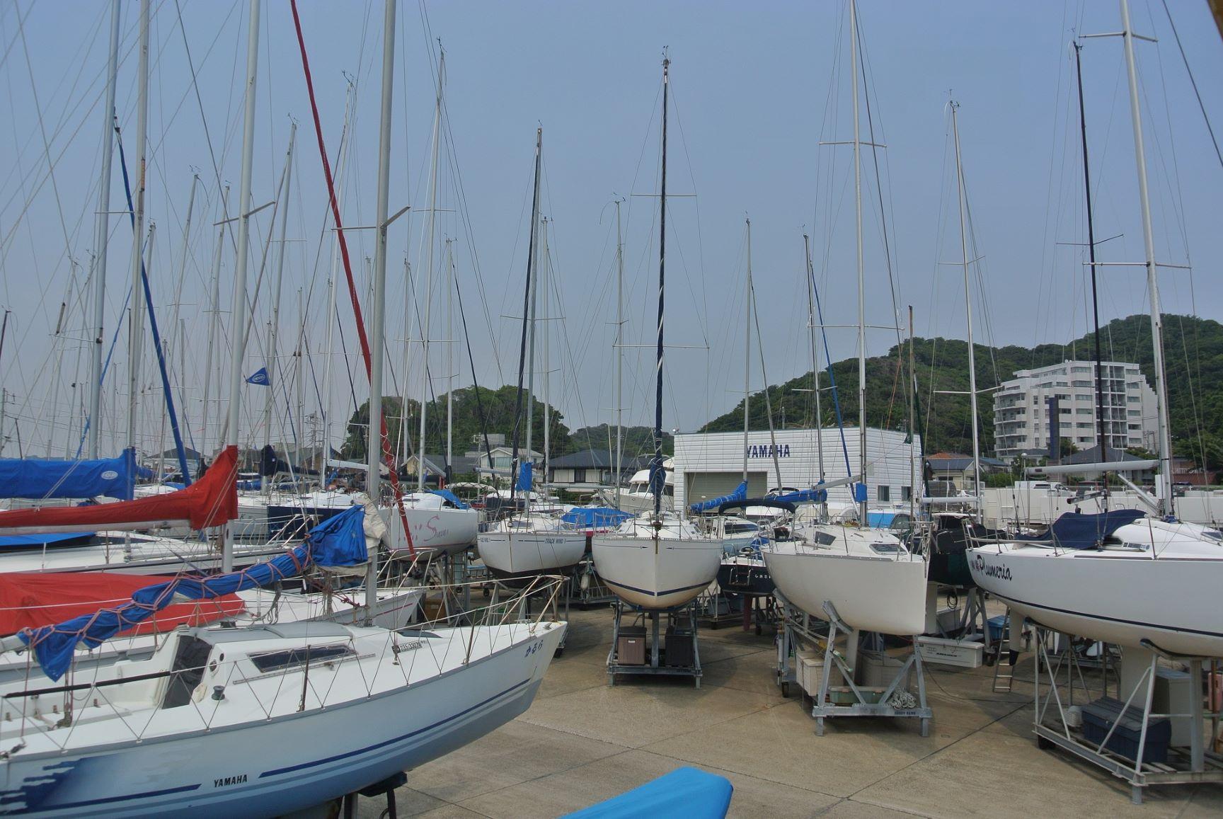 葉山ヨットハーバー。たくさんのカラフルなヨットが並ぶ。