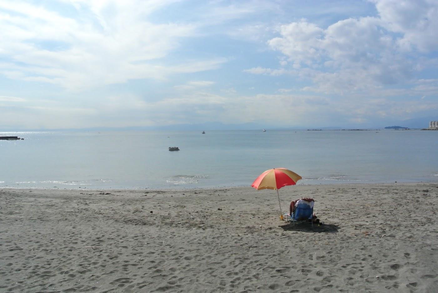 葉山の秋冬の海は、透き通ってとても穏やか。過ごしやすい気候だから、海散歩が楽しい。