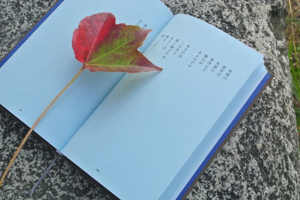 葉山の空気を感じながら、五感を働かせて読む本は格別である。