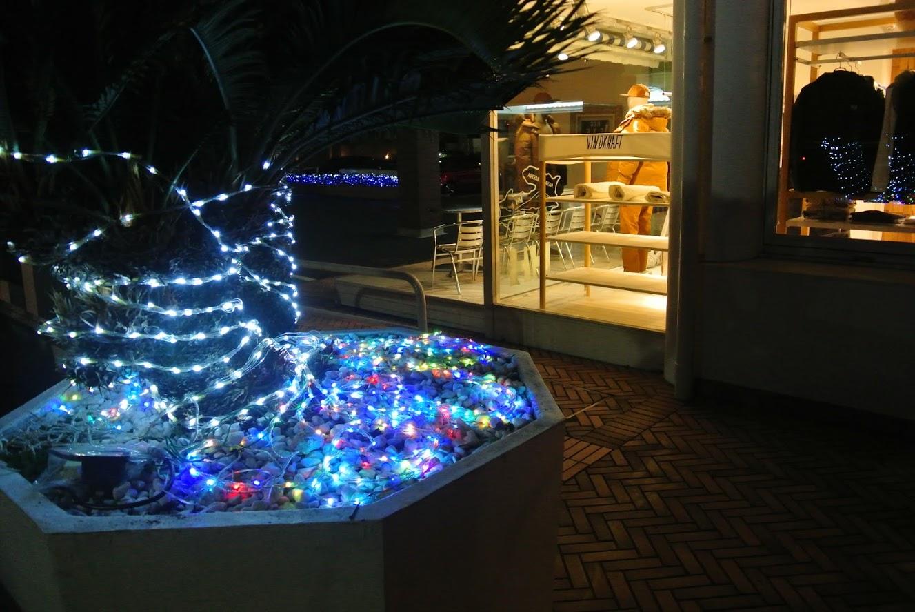 葉山マリーナのクリスマス