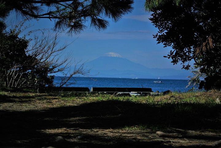 葉山公園から臨む、富士山