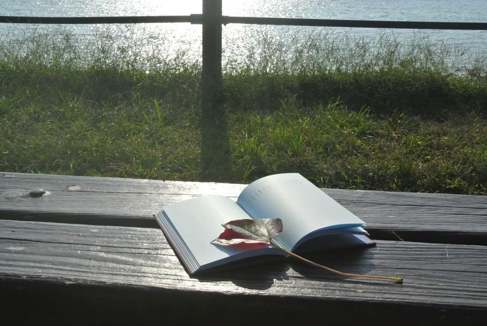 """ヴィラから徒歩2分の葉山公園は、緑豊かな公園。奥には大浜海岸が広がり、ベンチに座って海を眺めながら読書が楽しめる。"""""""