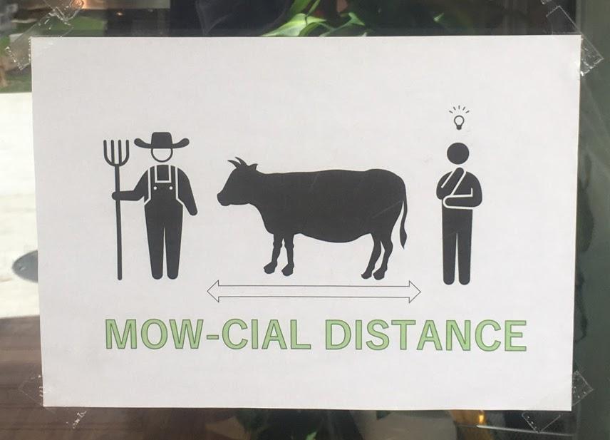 白い看板に人の絵が2人、その間に牛の絵が描かれている。絵の下には、ソーシャルディスタンスとかけてモーシャルディスタンスの文字が見える。