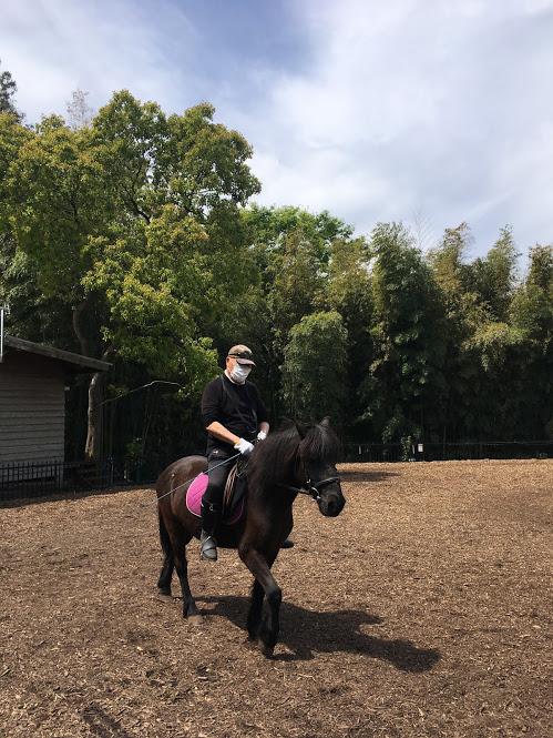 葉山まみあな牧場での乗馬体験。緑に囲まれた敷地の元優雅な体験が出来る。