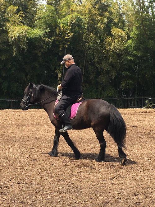 葉山まみあな牧場での乗馬体験。