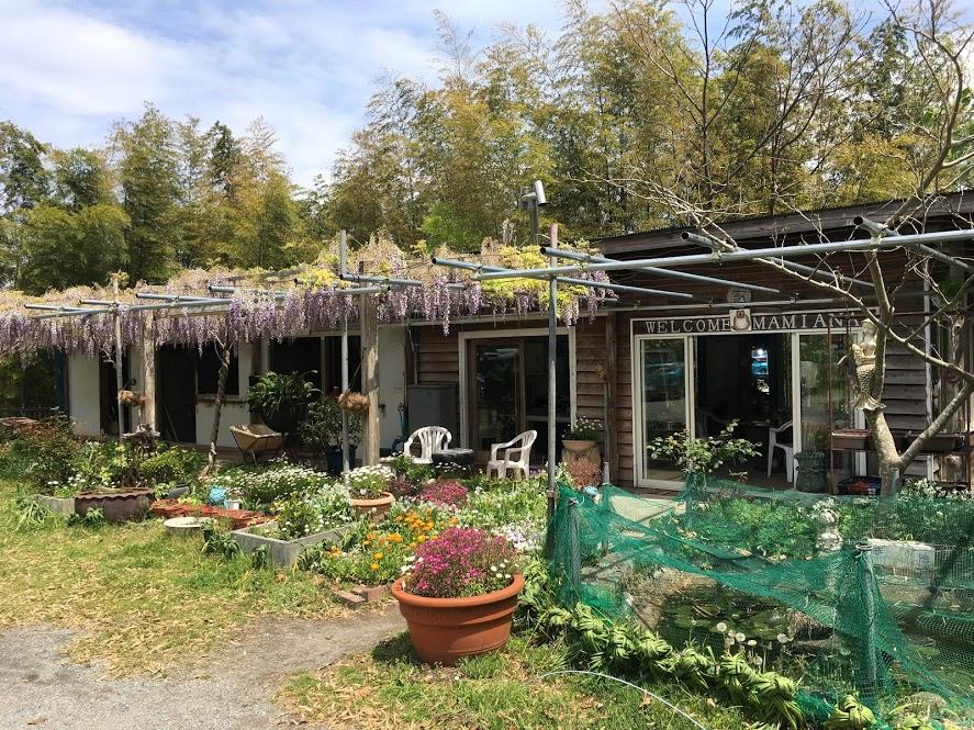 葉山まみあな牧場の藤棚。敷地の花々が色鮮やかに咲き誇っている。