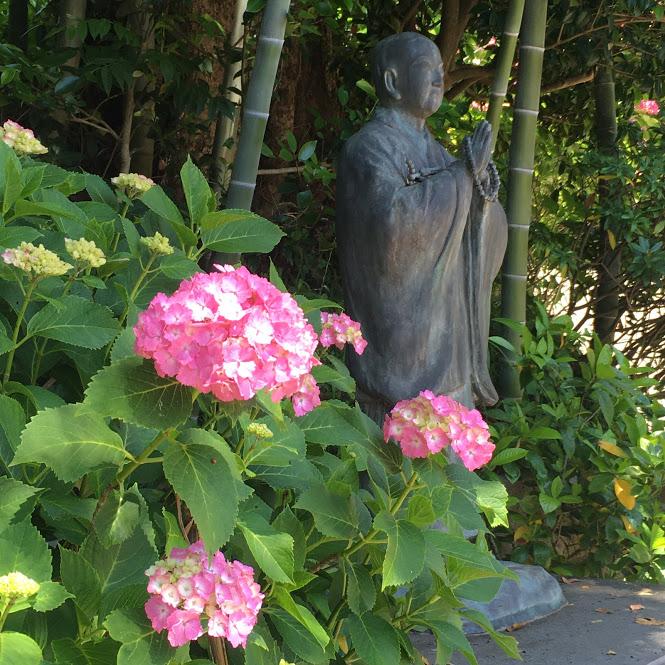 ピンクの紫陽花と仏像