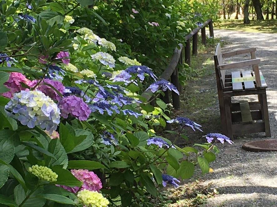 道横のベンチ